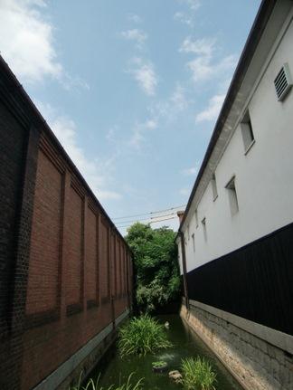 2010_08010157.JPG